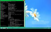 WindowsBlue - winver