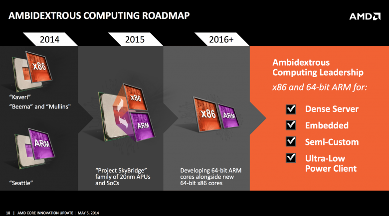 Amd Skybridge K 12 01
