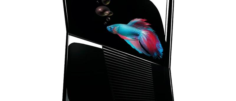 Xbox 360 a Windows 8 rybička