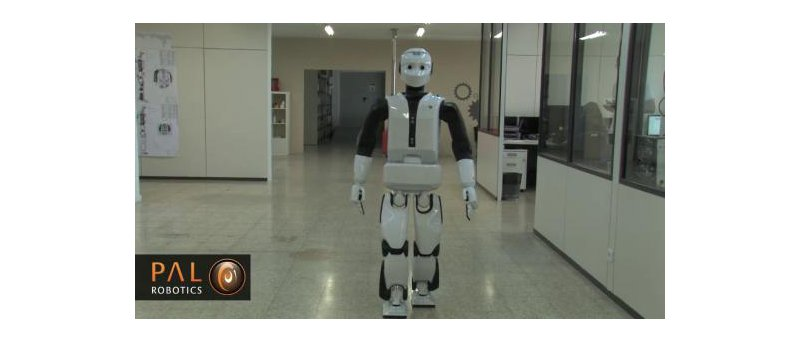 Pal Robotics perex