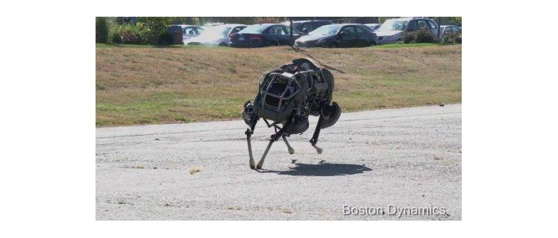 perexrobot