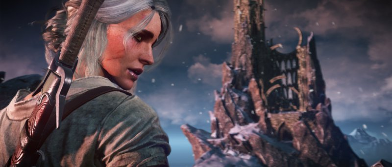 The Witcher 3 Wild Hunt Official 114