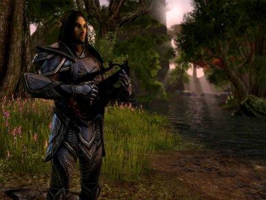 The Elder Scrolls Online - Obrázek 9