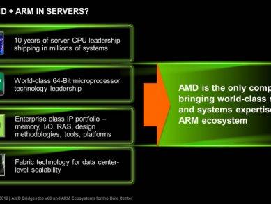 AMD-ARM_10