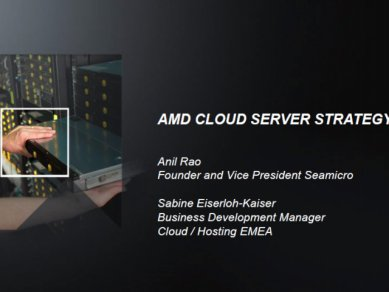 AMD enterprise roadmap 2013 2014 01