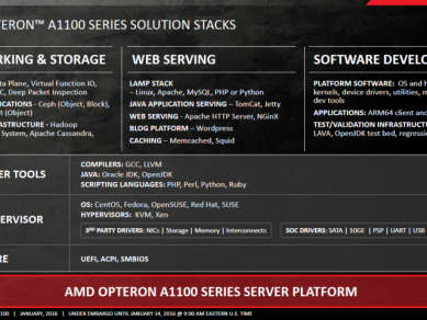 Amd Opteron A 1100 Seattle 12