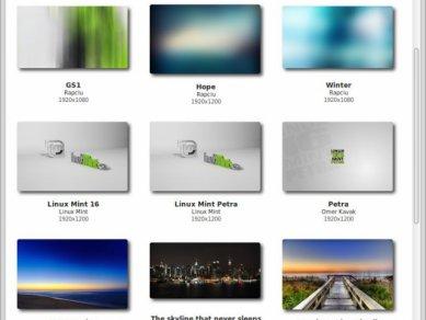 Linux Mint 16 - společné věci - Obrázek 1
