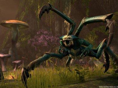 The Elder Scrolls Online - Obrázek 6
