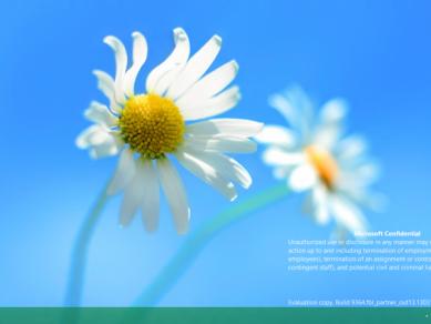 WindowsBlue03