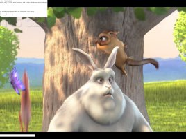 Adobe Flash Player 10.2 - využití Stage Video (Big Buck Bunny)