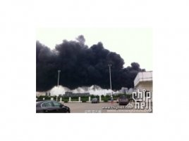 Požár u Hynixu 2013 - Obrázek 2
