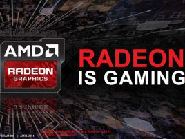 amd_never_settle_forever_q2_2014_07.jpg
