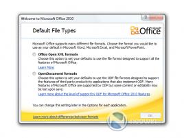 MS Office 2010 ballot screen