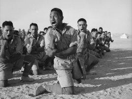 Nový Zéland, vojáci v Africe 1941
