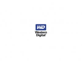 Western Digital logo / WD logo