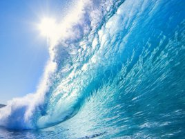 Hawaii Wave