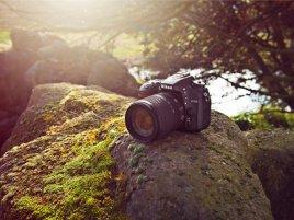 Nikon D7100 outdoors