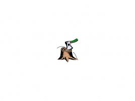HADOPI sekyra - HADOPI logo