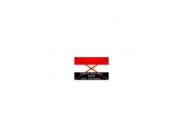 Odpojený Egypt