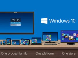 Windows 10 Platform 0 0 Standard 800 0
